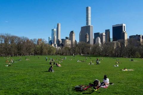 Registra Nueva York nuevo récord de muertes diarias