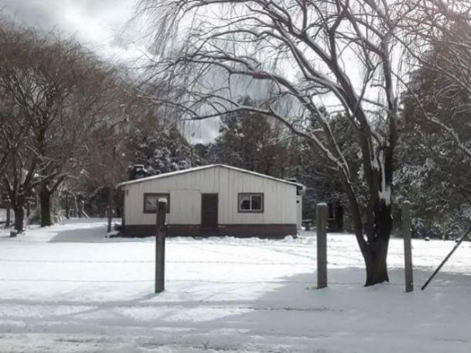 Recomendaciones por quinta tormenta invernal (Foto: Cuartoscuro)