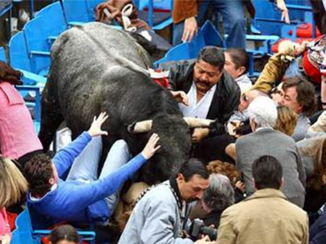 """El día de hoy se cumplen 10 años en que """"Pajarito"""", un toro de lidia de la ganadería de Cuatro Caminos, saltó del ruedo hasta la segunda fila de barrera de sombra durante la Temporada Grande 2005-2006 (AP)"""
