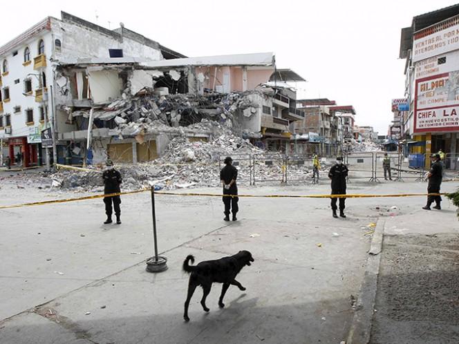 Más de tres mil viviendas han sido ya censadas y clasificadas. Foto: Reuters