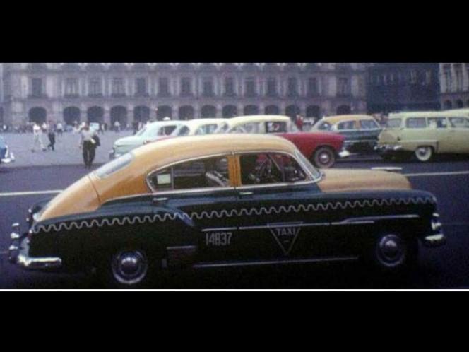 Durante las Olimpiadas de México de 1968, las cotorras gobernaban las calles y avenidas del Distrito Federal. Foto: Setravi