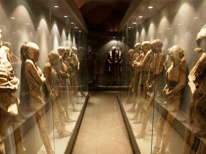 Exhuman cuerpos de panteón del Museo de las Momias