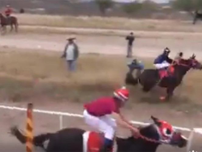 Un jinete y su caballo se accidentan en evento de carreras