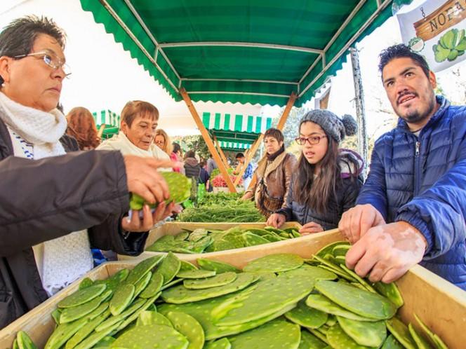 La primera edición del año del Mercado de Trueque se llevará a cabo este domingo, 14 de enero, en el estacionamiento ecológico del Bosque de Chapultepec.
