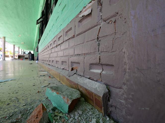 Recaudarán fondos para reconstruir escuelas afectadas por sismo con cola de dinosaurio