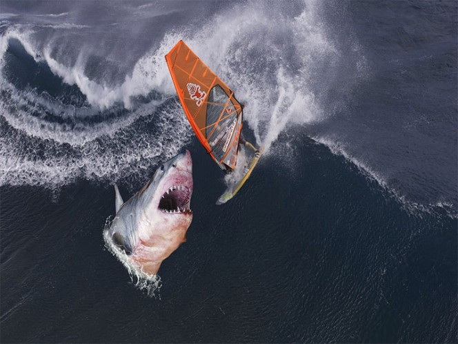 Sobrevive a ataque de Tiburón, oso y serpiente