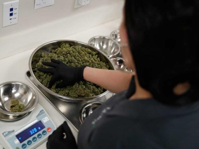 Invierten 4.000 millones de dólares en una cerveza con marihuana