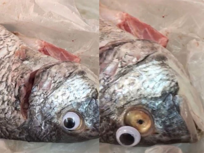 Venden pescado con ojos falsos para ocultar su mal estado