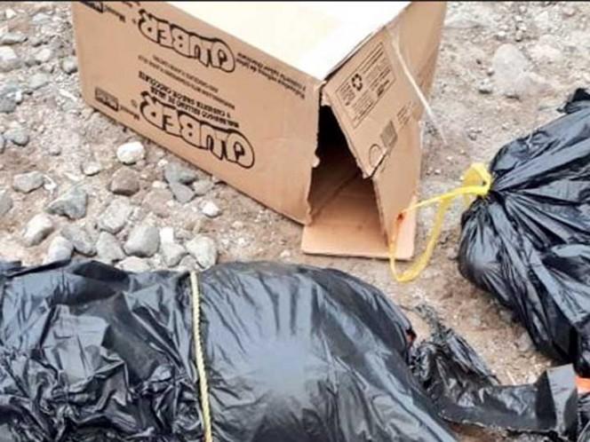 Abandonan cadáver desmembrado en Ecatepec