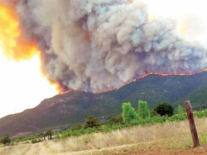 SINIESTRO. El pasado 6 de junio, la Comisión Nacional Forestal reportó un incendio en el municipio de Arteaga, Coahuila / Foto: Notimex/Archivo