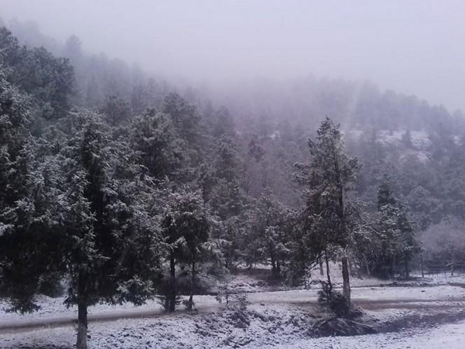 Cae nieve y aguanieve en región serrana de Chihuahua
