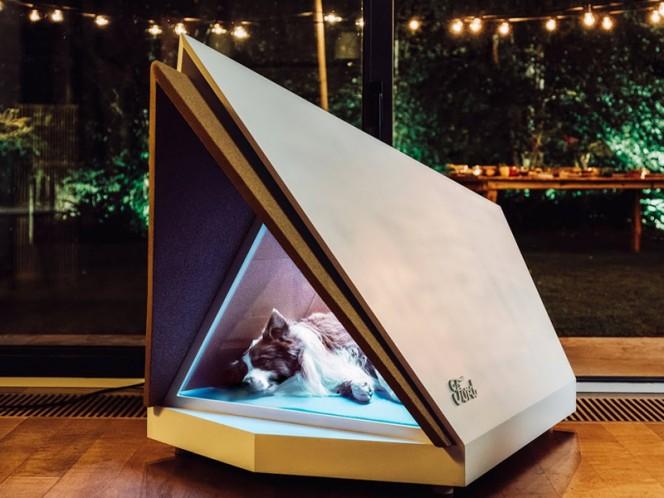 Diseñan casita para perros que los protege de fuegos artificiales