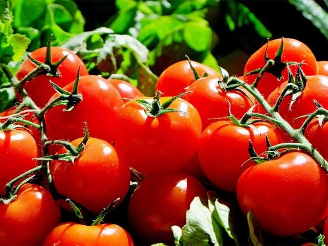 Impone un arancel del 17,5% al tomate mexicano