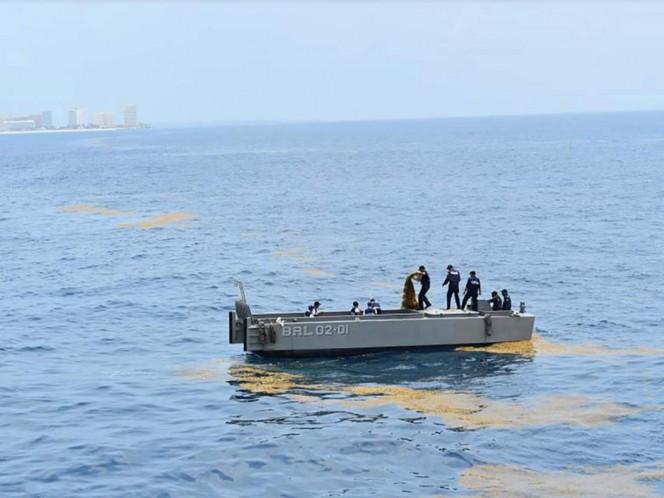 Cerca de 48 toneladas de sargazo son recolectadas en playas de Cancún