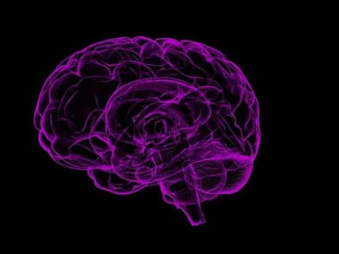 El VIH puede afectar al cerebro a pesar del tratamiento