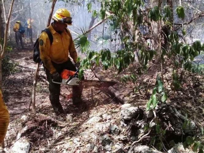 Controlan en un 75% el incendio en Sian Ka'an