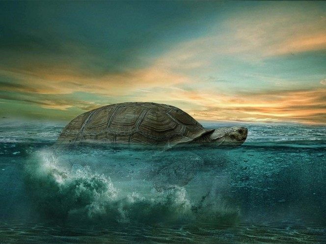 Fallece tortuga 'Alagba' de 344 años, la más antigua de África