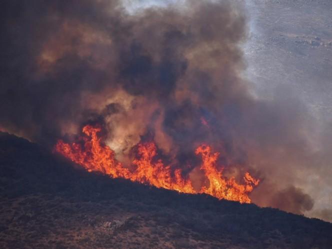 Declaran 'zona de desastre' a Rosarito por incendios forestales