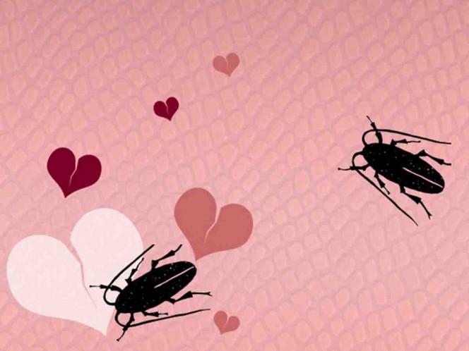 Zoológico ofrece nombrar a cucarachas y ratas como tu ex