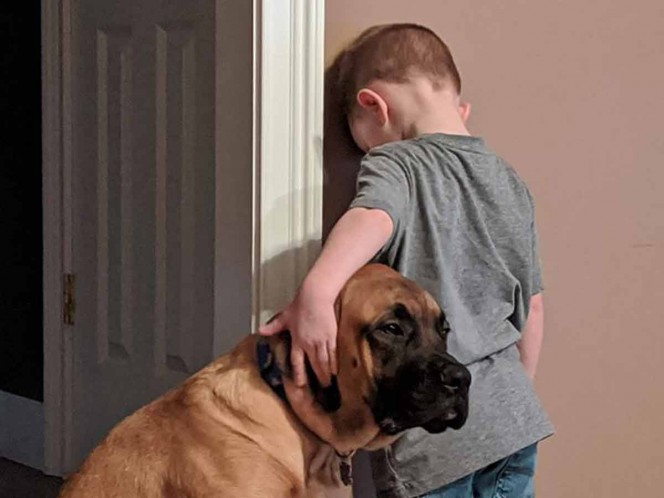 Perro acompaña a niño durante su castigo de cara a la pared