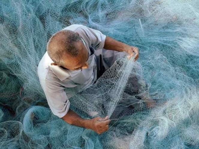 Piden que Diconsa distribuya pescados y mariscos en apoyo a comunidades