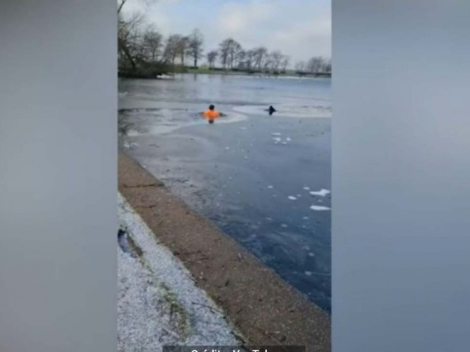 Man jumps into frozen lake to save puppy
