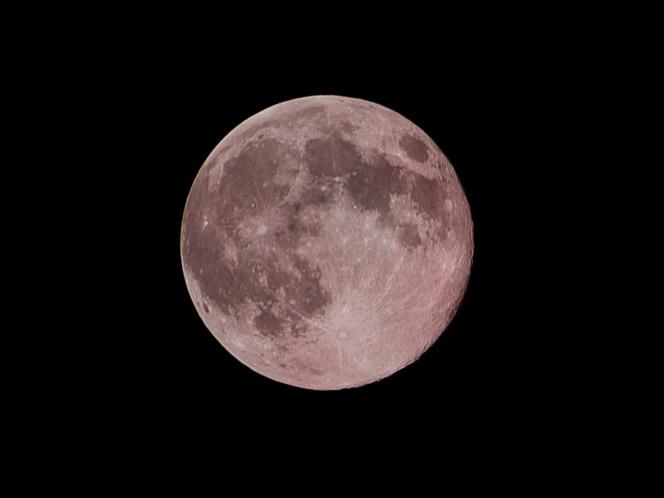 Abril nos regalará una superluna rosa. Foto: pixabay