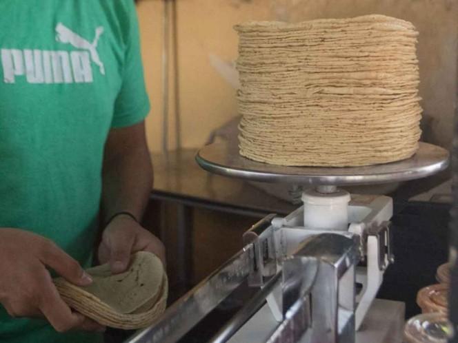 La Profeco reportó que, a nivel nacional, el precio promedio del kilogramo de tortilla se ha mantenido estable. Foto: Cuartoscuro/Archivo