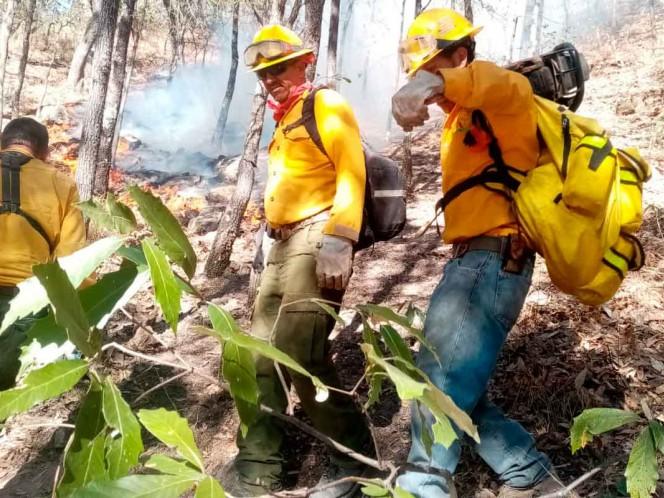 Continúan activos tres incendios de atención especial en Sonora