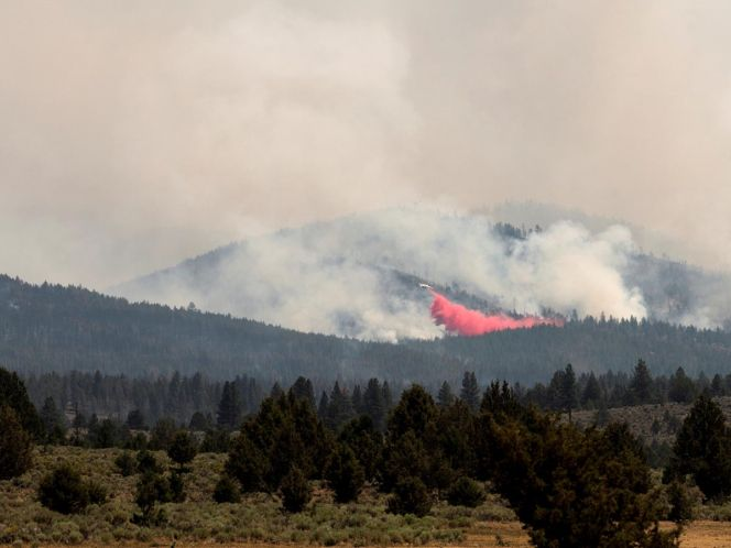 Bootleg Fire', el enorme incendio que ya devoró 80 mil hectáreas y sigue  sin control