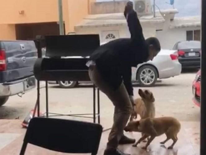 Sujeto apuñala a perro; edil de Piedras Negras promete castigo