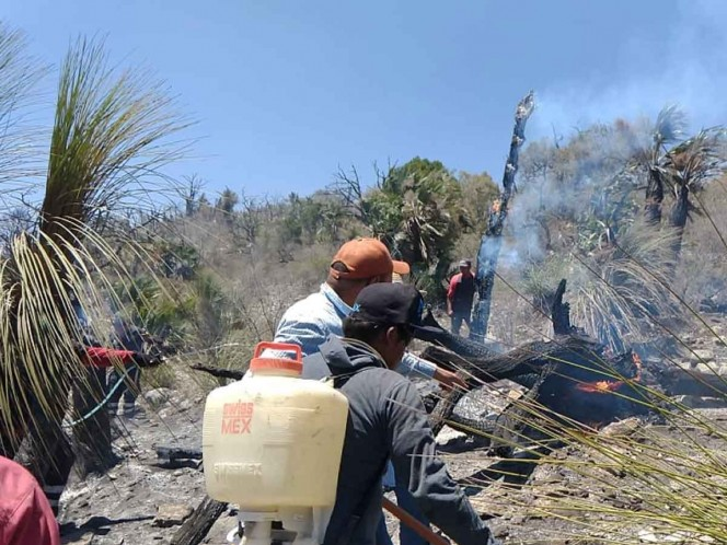 Se registra intenso incendio forestal en Hidalgo