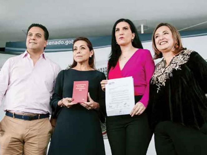 Agudizan la pugna por relevo en CNDH; Morena y PAN no se ponen de acuerdo