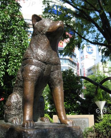 Tokio celebra 90 años del nacimiento del perro Hachiko Hachiko14111311