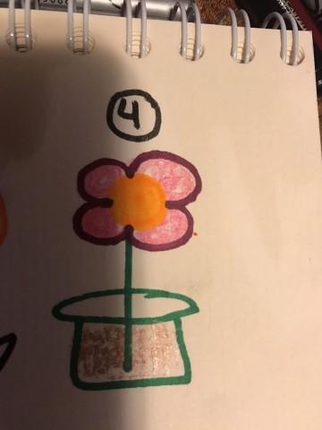Elige una flor y revisa lo que significa