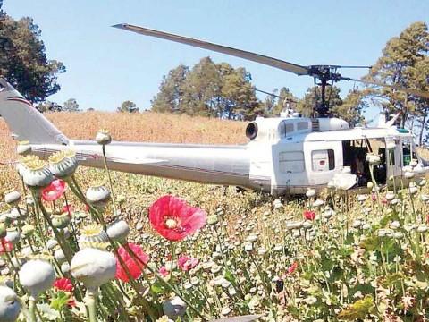 Servicios aéreos de la PGR Noticias, opiniones, fotos, videos - Página 6 2122639