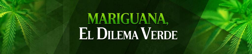 ¿Hay que legalizar la marihuana? - Página 19 1380677